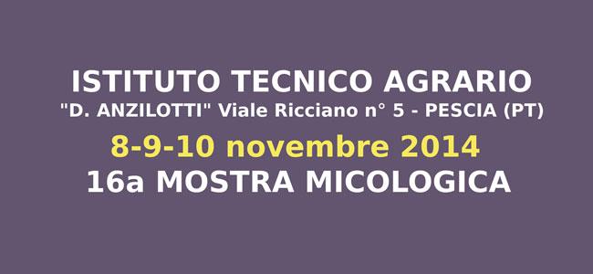 16a Mostra Micologica 8,9,10 novembre 2014