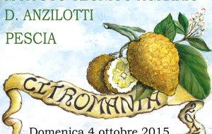 Citromania 4 ottobre 2015
