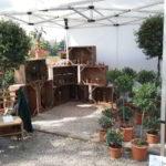 ita e Naturalitas a Verdemura Lucca